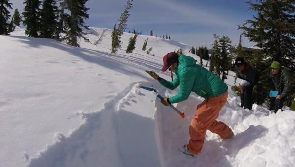 AIARE L2 Snowpit