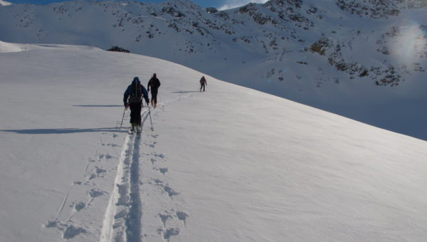 Ortler Backcountry Ski Tour
